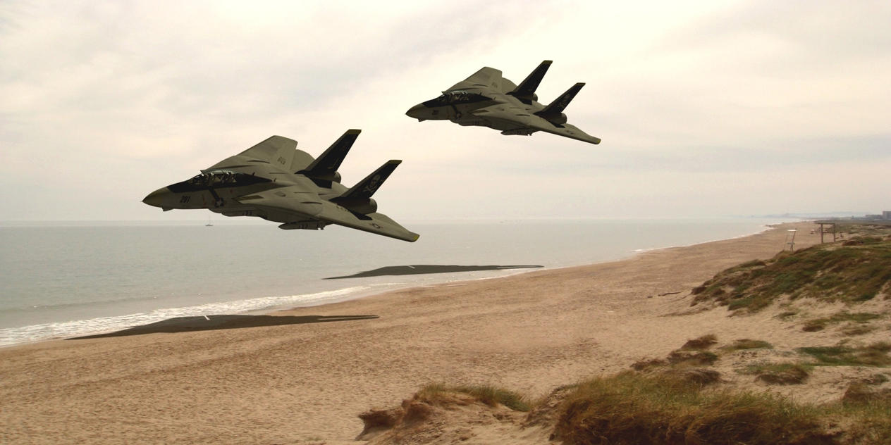F14 Tomcats by Emigepa