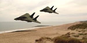 F14 Tomcats