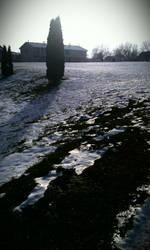 shiney snow2