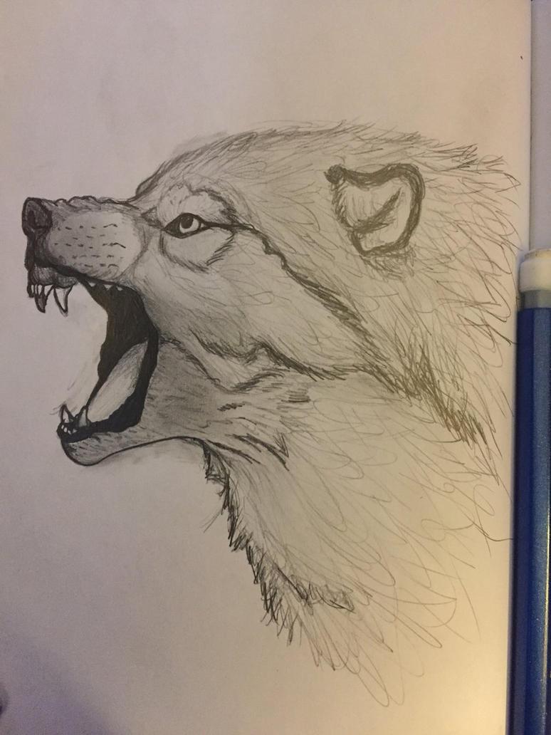 Wolf by crumbleupsoul
