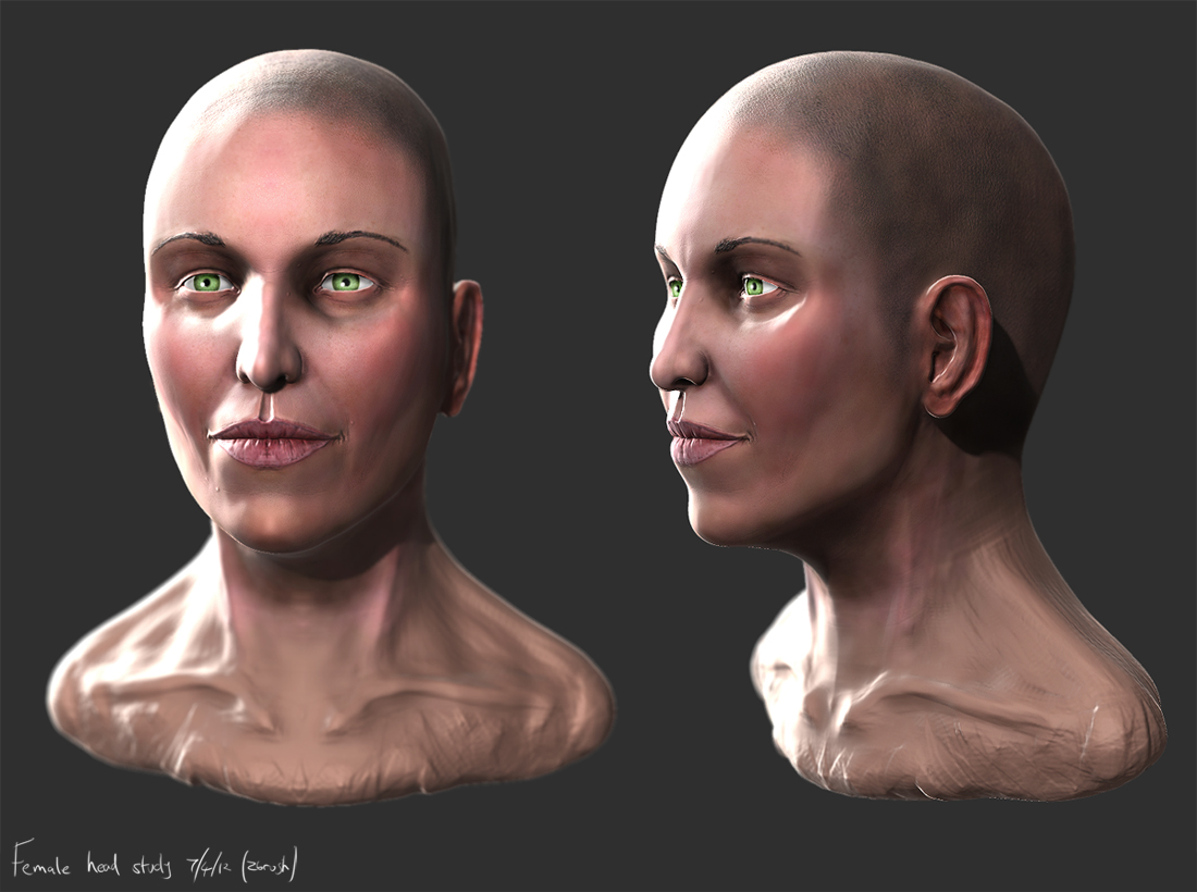 zbrush female head anatomy by liamslackofsurprise on DeviantArt