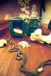 The Curious Cupboard - Locket by sixAstray