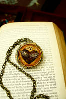 Hearts a flutter - Locket by sixAstray