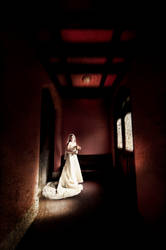 The light of the bride II by greycamera