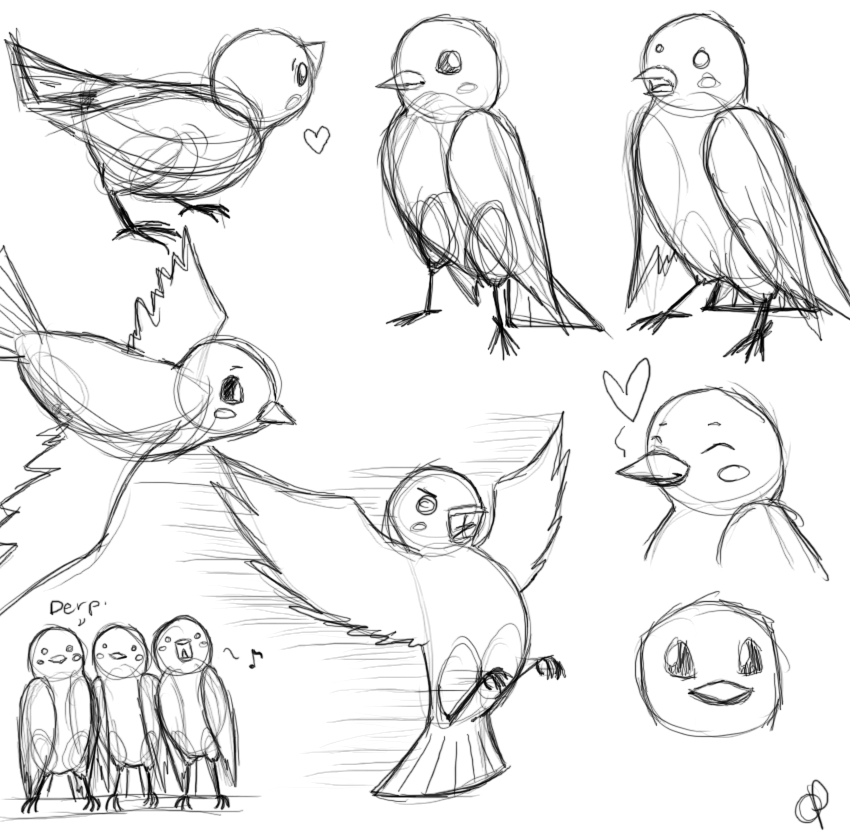 Bird Sketches By Oranges-and-Pears On DeviantArt
