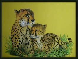 Cheetahs by Vulkanette