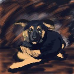 DOGO! by lambieV