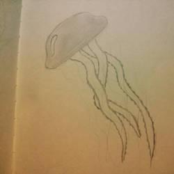 Jellyfish! by TheDark-Carnival