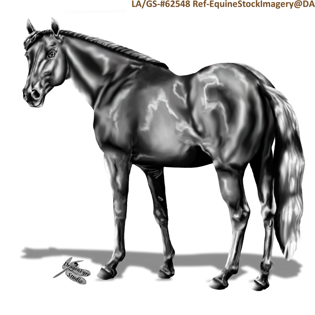Quarter horse drawing - photo#26