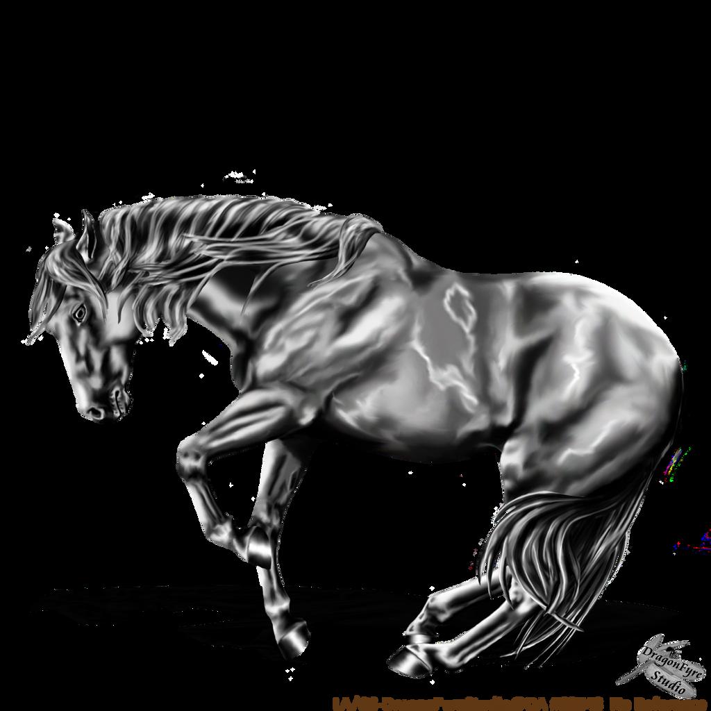 Black And White Quarter Horses