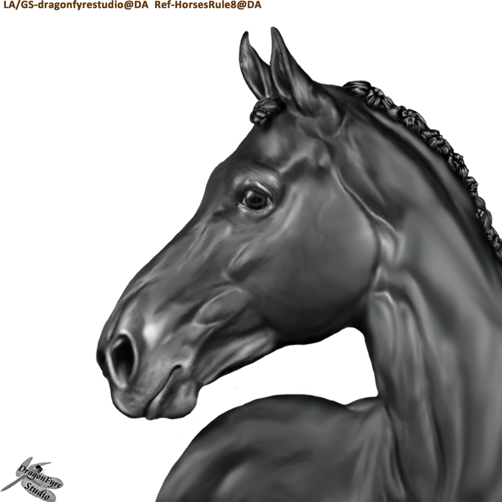 Black horse head drawing - photo#19