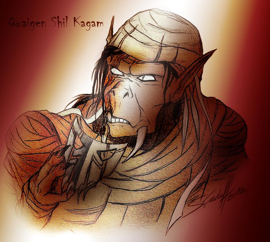 Quaigen Shil Kagam by Hevimell