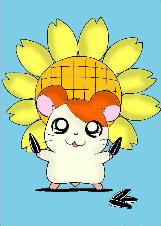 ひまわりの種をもっているハム太郎です。