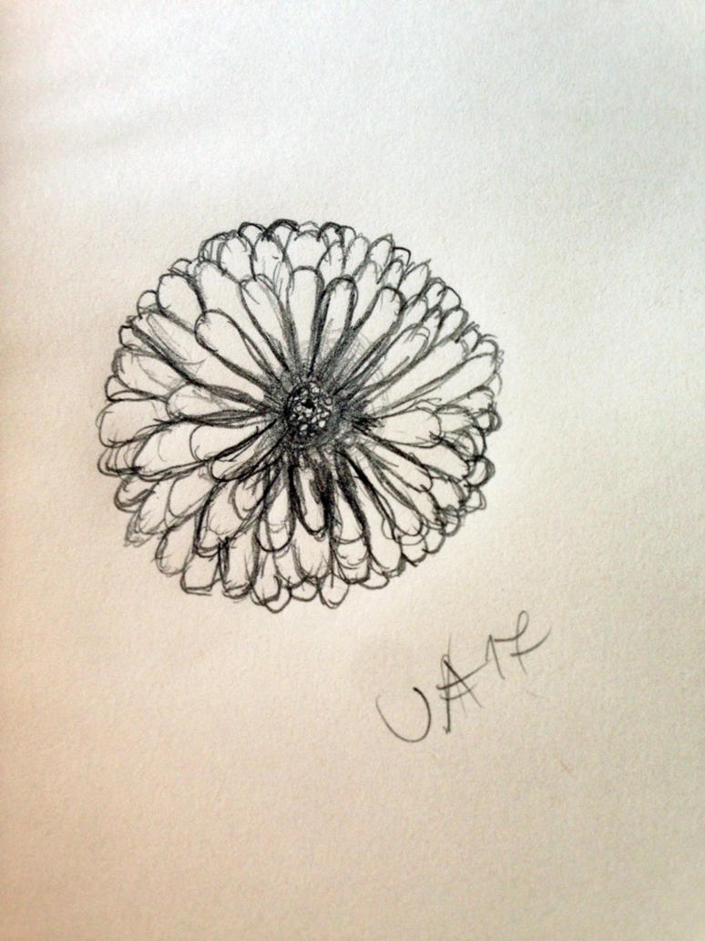 Drawing of a flower by ArtyJo4life