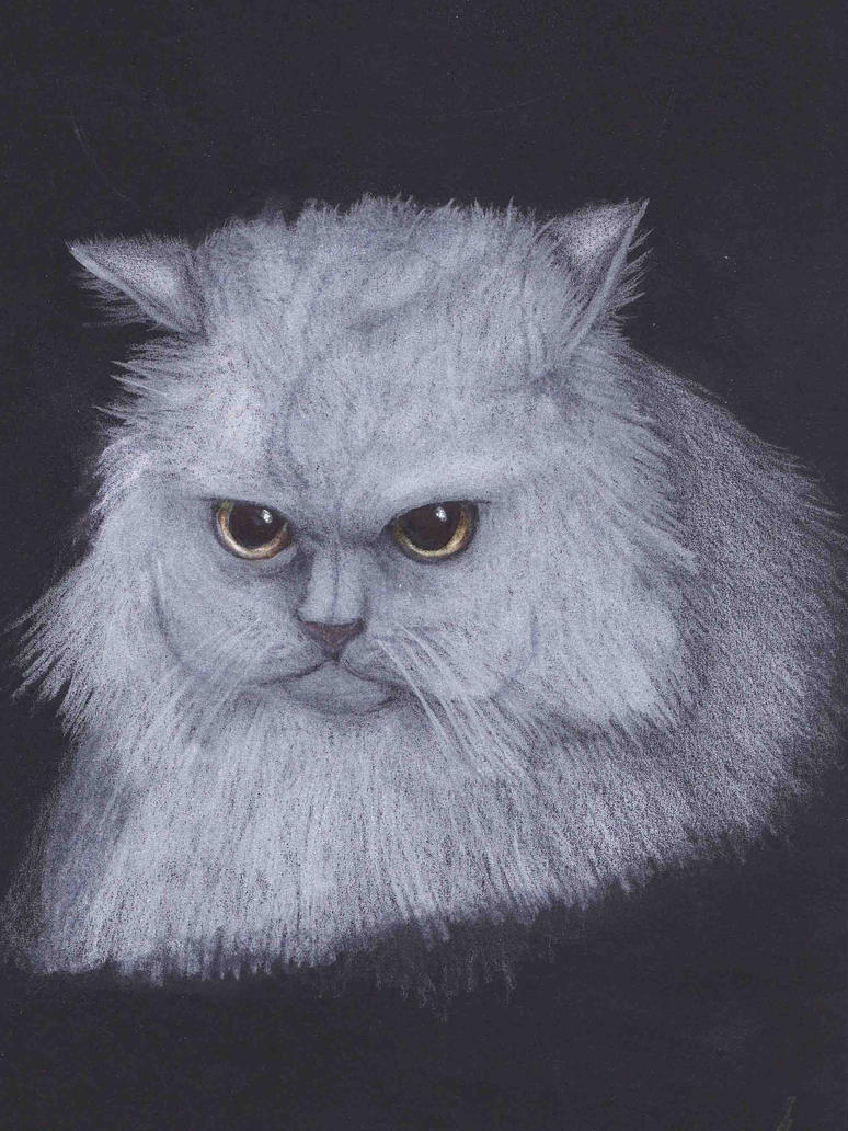 The White Cat by nefertiset