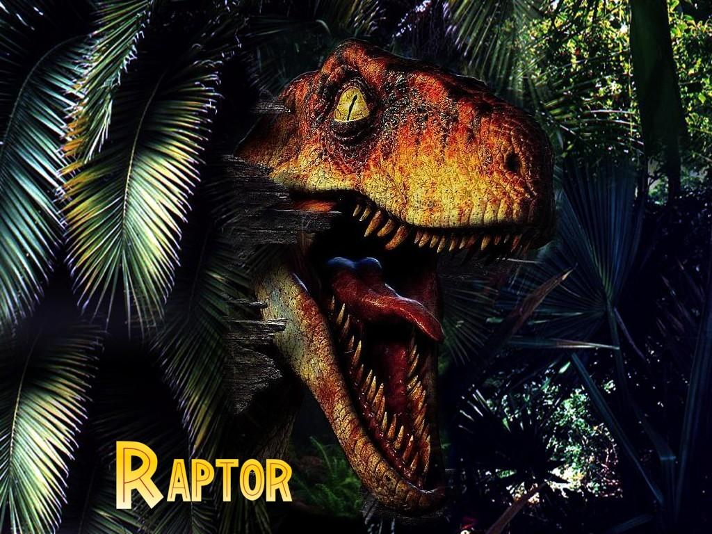 Raptor TLW By DsKoRn