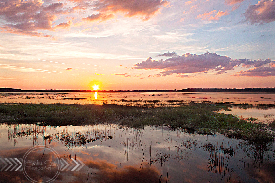 Myakka River Sunset by CandiceSmithPhoto