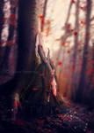 Autumn of Memories
