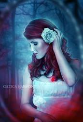 Sacred Heart by Celtica-Harmony