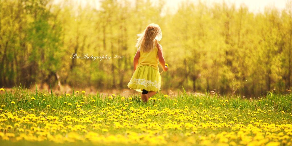A Fairytale Life by PhotographsByBri