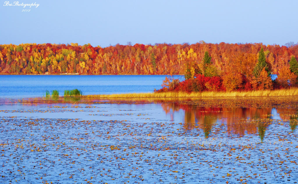 Reflections of Fall by PhotographsByBri