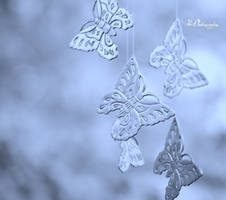 Butterfly Kisses by PhotographsByBri