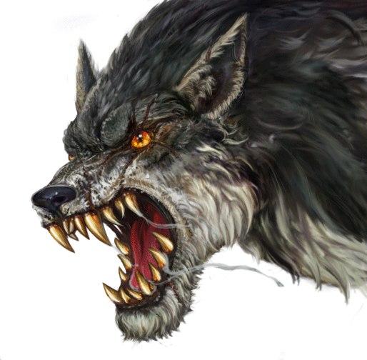Dire wolf by Kimyri
