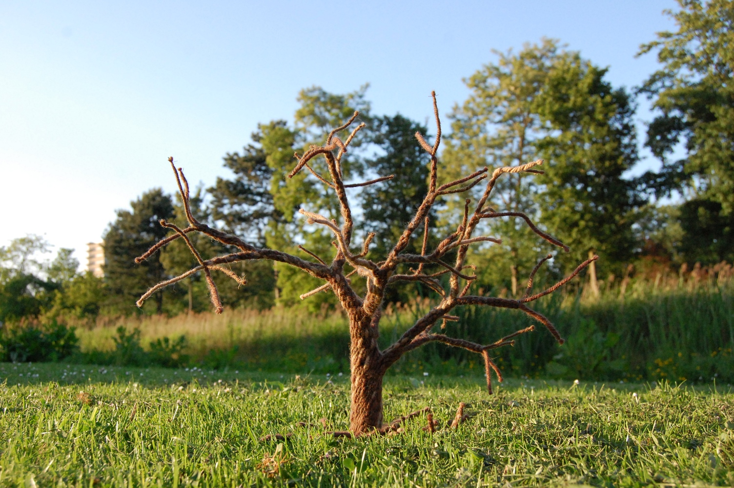 woven tree 1 by were-were-wolfy
