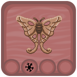 Oak Silk Moth