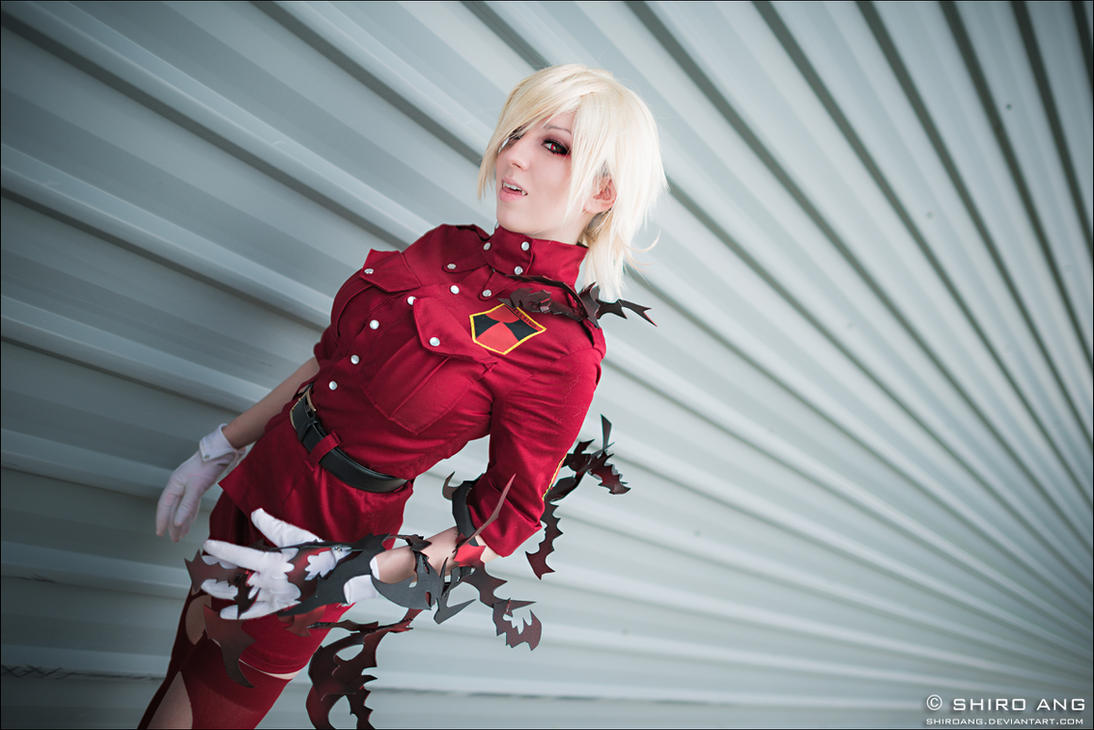 AFA 2012 - Hellsing - 01 by shiroang