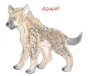 Adane by Leilanse