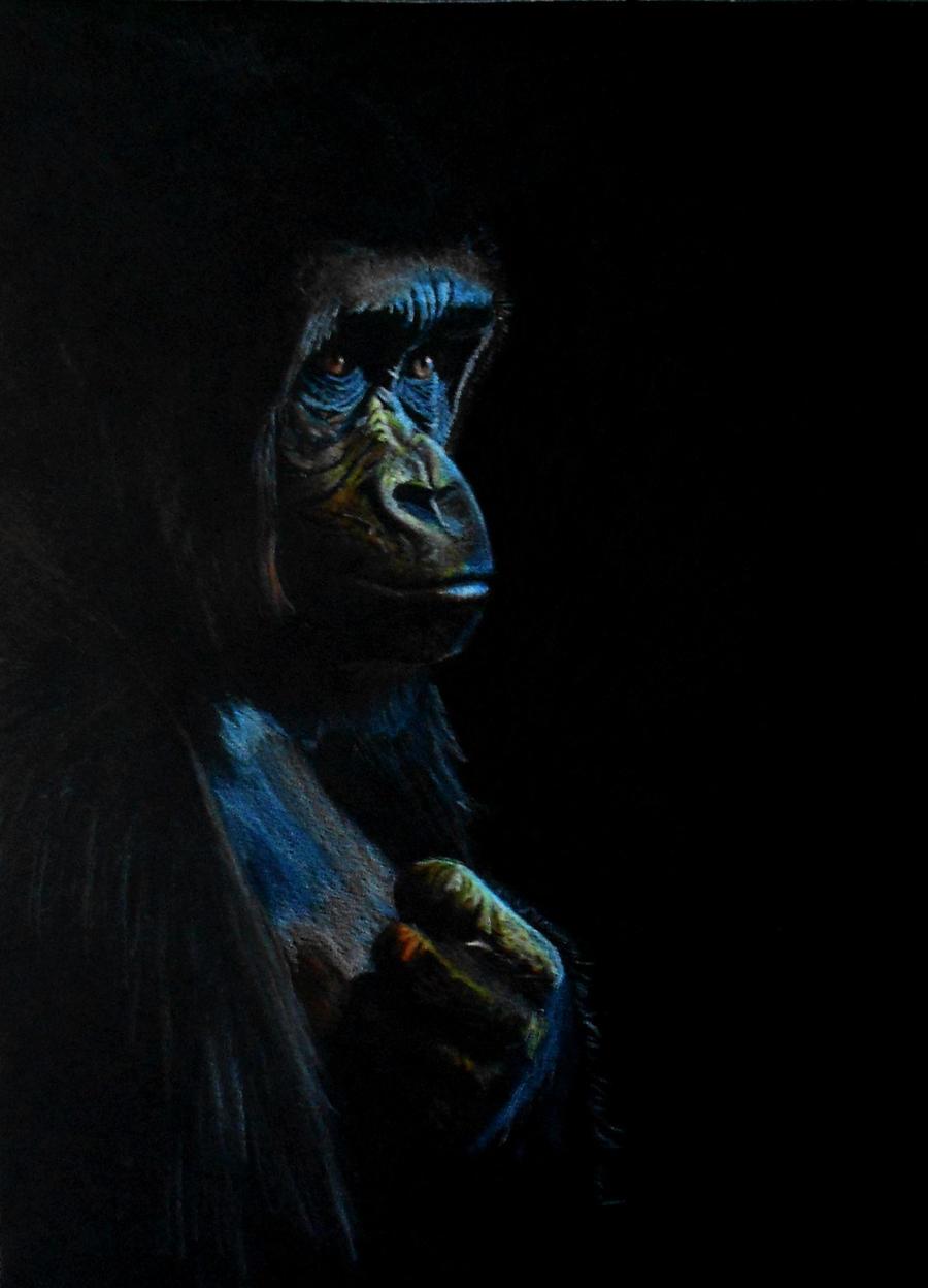 Emotive Gorilla by mrs-matsuyama