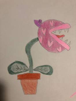 Pink Piranha Plant x3