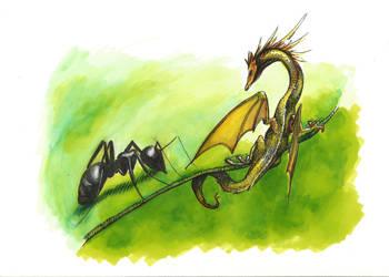 Dragonfly by Hymnodi