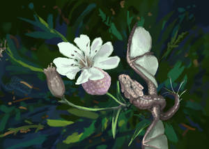 Smaugust 31: Flower
