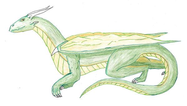 Dragon profile Colored