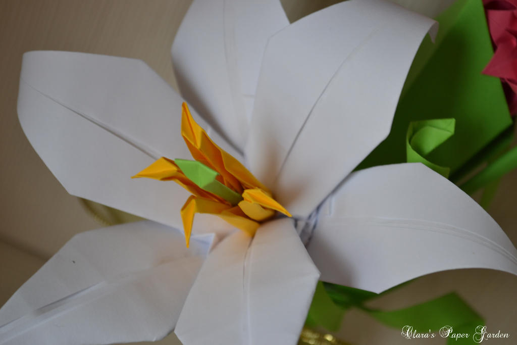 Paper Lily by cridiana