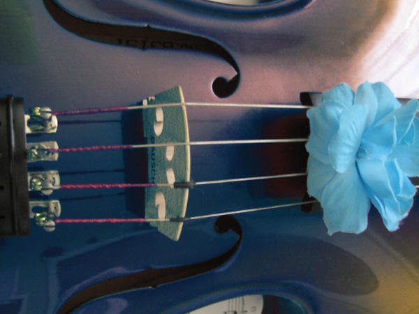 Blue Violin by sylvialovesphotos