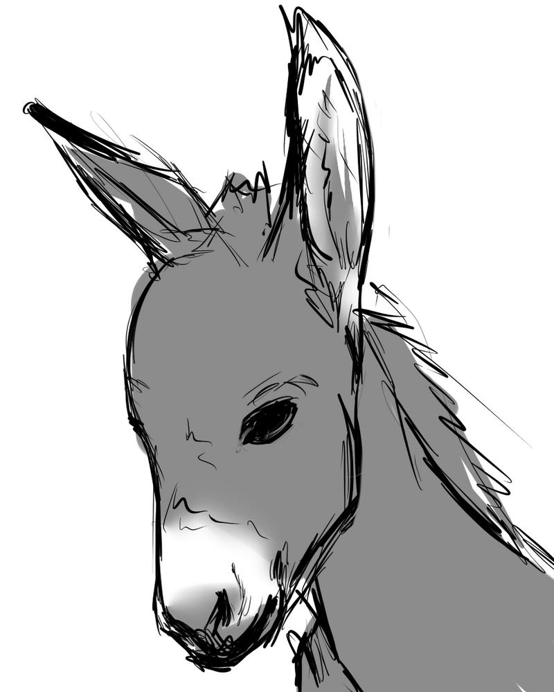 Line Drawing Donkey : Donkey d by sarahbearface on deviantart