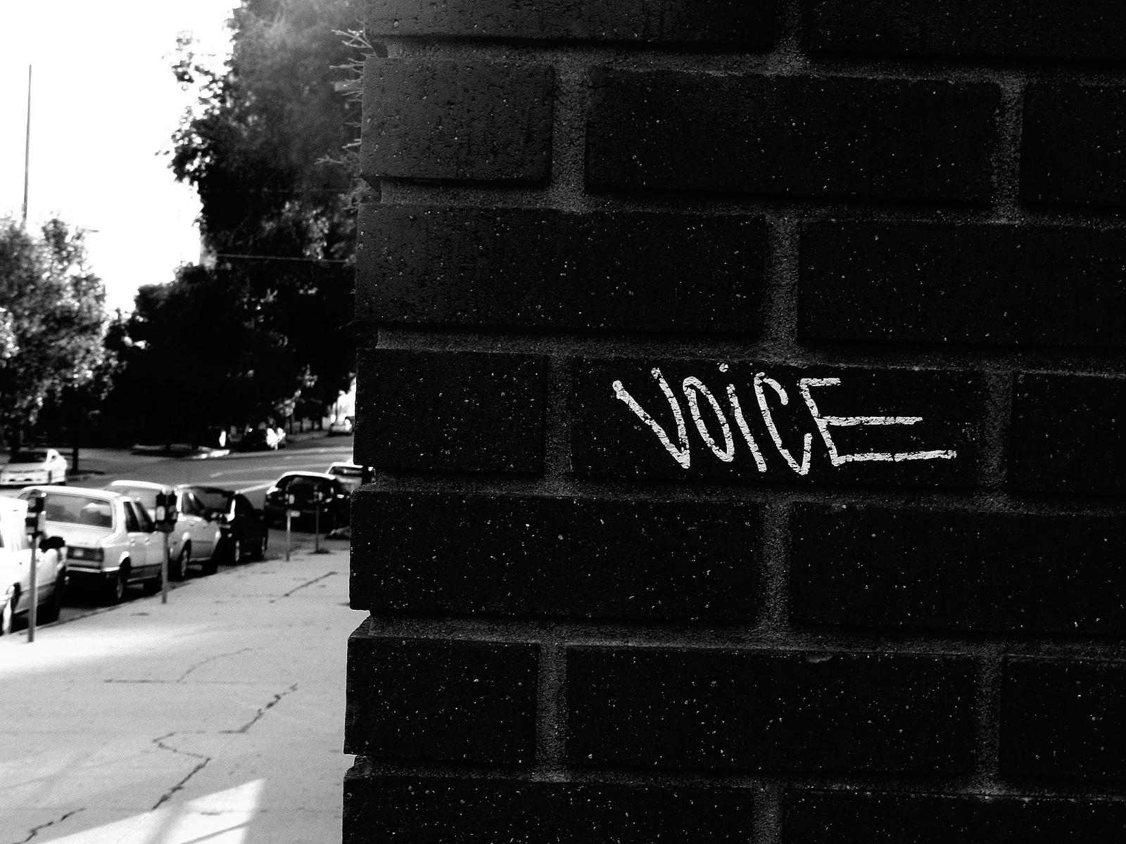Voice by Foxfire4000