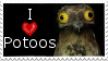 I love Potoos by CrystalCircle