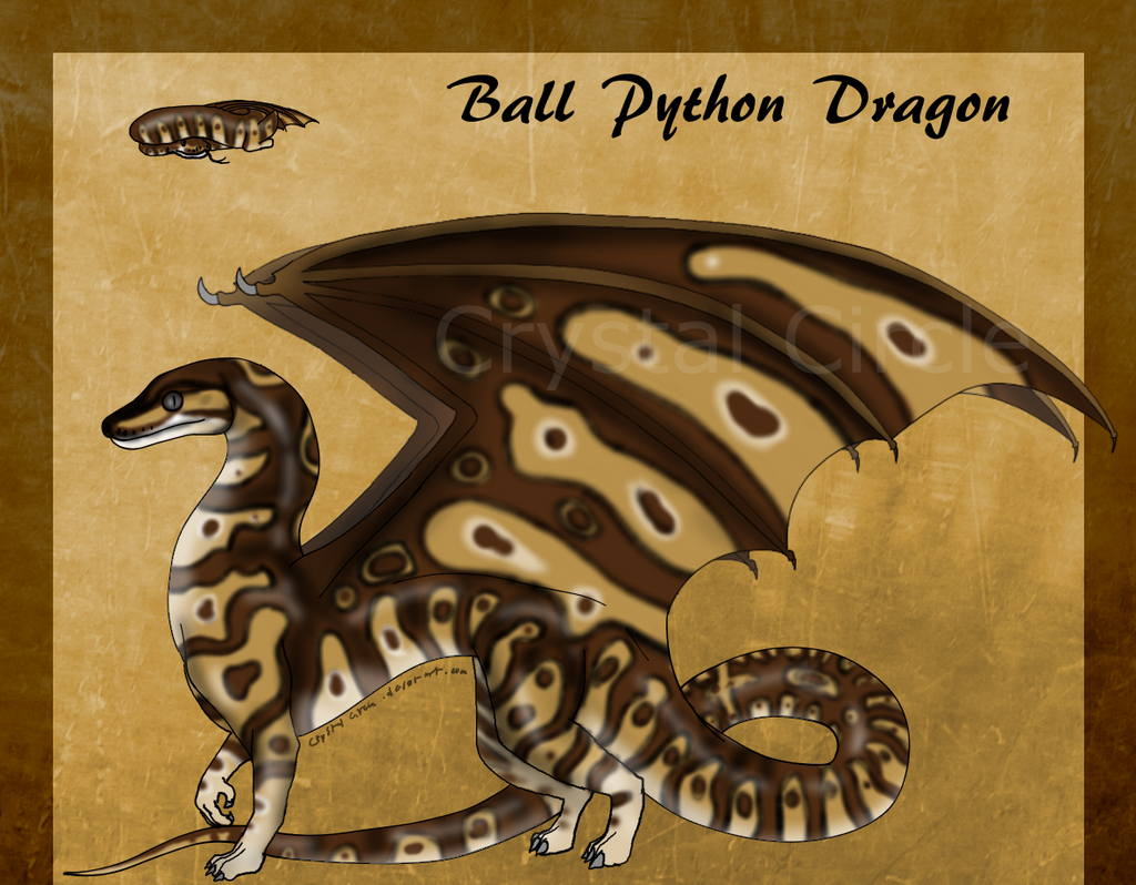 Ball Python Dragon -Auction-(MOVED!) by CrystalCircle