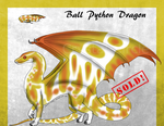 Ball Python Dragon 3 -Auction-(CLOSED)