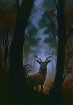 deer redraw