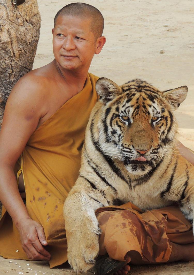 The Tiger Temple. by El-Amigo-Chico