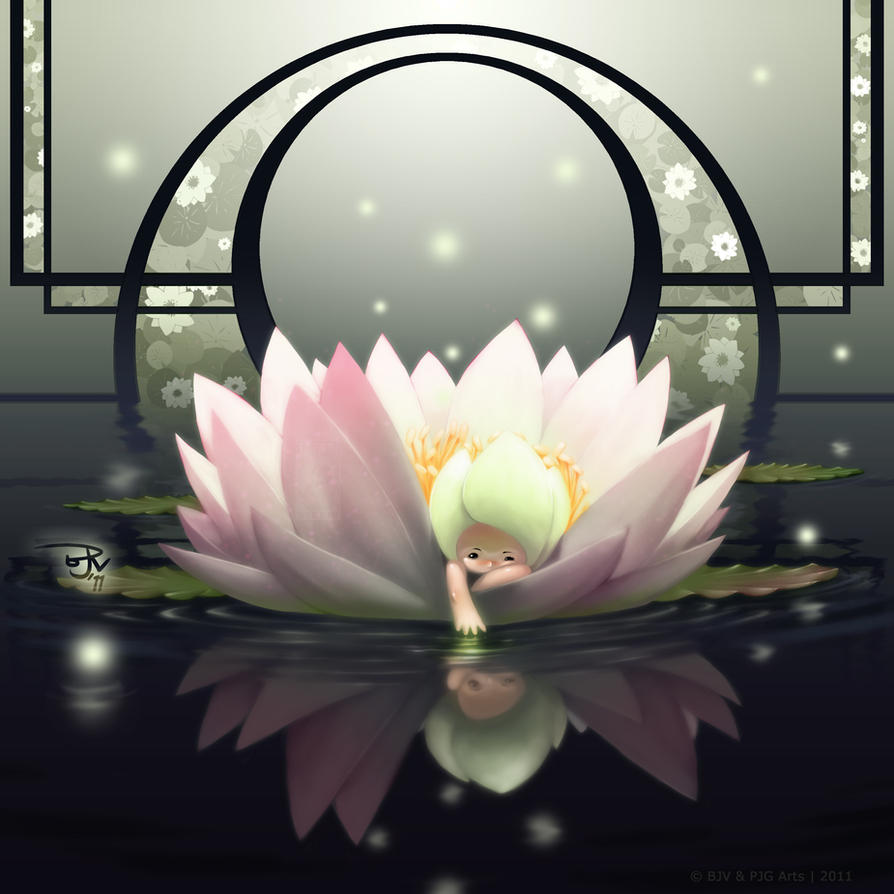 Flower Fairies Water Lily By Totmoartsstudio2 On Deviantart