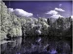 Reflections.. by Spiegeltraum