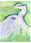 The Heron by kfairbanks