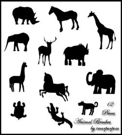 djur penslar