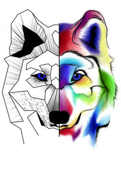 Two sides Wolf